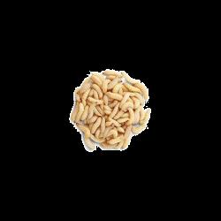 Mušie larvy (hermetia illucens) - 25ks
