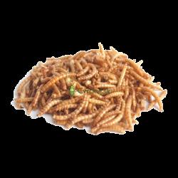 Sušené múčne červy 50g